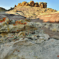 Colorful Lichens Boulders And Dunes At Red Point by Ray Mathis