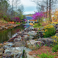 Colorful Spring At Crystal Bridges Museum Of American Art by Gregory Ballos