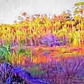 Colors Along The Loop by Alice Gipson