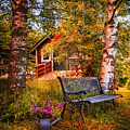 Come Back Home On An Autumn Afternoon by Debra and Dave Vanderlaan