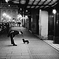 Commissionaires Dog by Kurt Hutton