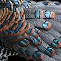 Copper-tipped Ocellated Turkey Feathers Photograph by Debi Dalio