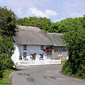 Cornish Thatched Cottage by Terri Waters