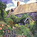 Cottage Gardens by David Lloyd Glover