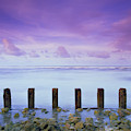 Cotton Candy Skies Over The Sea by Trinidad Dreamscape