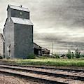 Cottonwood South Dakota Grain Elevator IIi by Joan Carroll