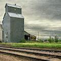 Cottonwood South Dakota Grain Elevator by Joan Carroll