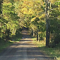 Country Road In Fall by Christine Lathrop