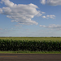 Country Road Summer Flats by Dylan Punke