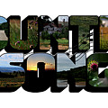 Country Song Big Letter by Colleen Cornelius