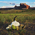 Courthouse Rock Moab Utah by TL Mair