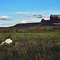 Courthouse Rock Southern Utah Southwest Art Moab Utah by TL Mair