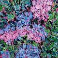 Cozy Hydrangeas by Larry Lerew