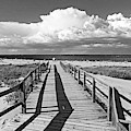 Crane Beach Footbridge Ipswich Ma Black And White by Toby McGuire