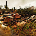 Creek And The Catalinas In Snow by Chance Kafka