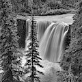Crescent Falls Through The Trees Black And White by Adam Jewell