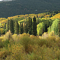 Crested Butte Colorado Fall Colors Panorama - 1 by OLena Art Brand