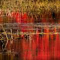 Crimson Mornings by Karen Wiles