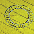 Crop Circle Near West Kennet by Heritage Images