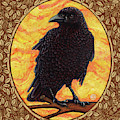Crow Portrait - Brown Border by Amy E Fraser