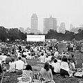 Crowd Packs The Sheep Meadow Area Of by New York Daily News Archive