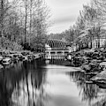 Crystal Bridges Museum River Trail - Monochrome 1x1  by Gregory Ballos