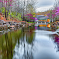 Crystal Bridges Museum Surrounded By Spring Colors by Gregory Ballos