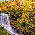 Cullasaja Falls In Full Bloom by Andy Crawford
