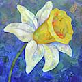 Daffodil Festival I by Shadia Derbyshire