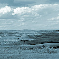 Dakota Grassland Shadows by Cris Fulton
