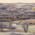 Dakota Prairie Slope Reverie by Cris Fulton