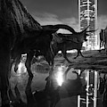Dallas Texas Longhorn Cattle Drive Sculptures And Skyline Reflections - Monochrome by Gregory Ballos