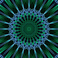 Dark Blue And Green Mandala by Jaroslaw Blaminsky