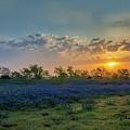 Daybreak In The Land Of Bluebonnets by Mark Alder
