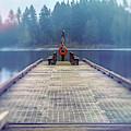 Deep Lake Dock  by Jean OKeeffe Macro Abundance Art