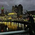 Deer On Bridge Img_4143 by Michael Thomas