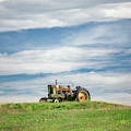 Deere On The Hill by Todd Klassy