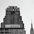 Defining New York by Az Jackson