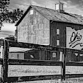 Delaware County Bicentennial Barn - Ohio - Black And White by Gregory Ballos