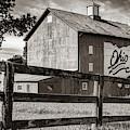 Delaware County Bicentennial Barn - Ohio - Sepia by Gregory Ballos