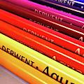 Derwent Aquatone Pencils by Susan Maxwell Schmidt