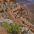 Descending Shafer Trail In Canyonlands Np by Ray Mathis