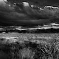 Desert Shadow Moods by Chance Kafka