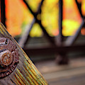 Details On A Covered Bridge by Jeff Sinon