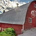Detroit Red Wings Logo - Red Barn by Joann Vitali