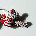 Detroit Red Wings V New York Islanders by Al Bello