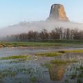 Devil's Tower National Monument by Matt Shiffler