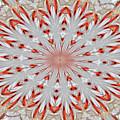 Digitalized Cardinal by Debbie Stahre
