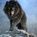 Dire Wolf by Daniel Eskridge