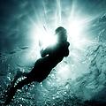 Diver by Alessandro Licata